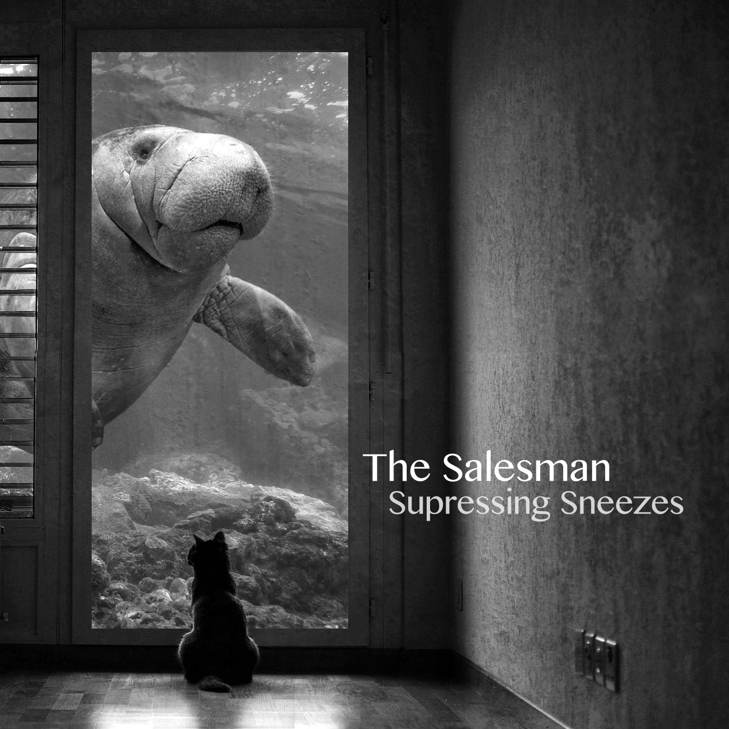 The Salesman, Album: Supressing Sneezes - 7 Original Ukulele Songs Due to Be Released 8-25-15